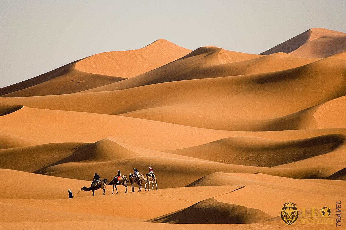 Image of the largest desert in the world - Sahara Desert, Africa