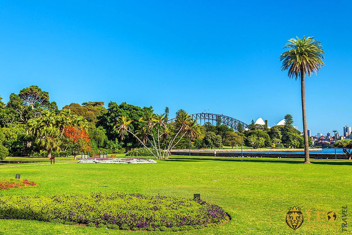 Royal Botanic Garden - a popular tourist attraction in Sydney, Australia