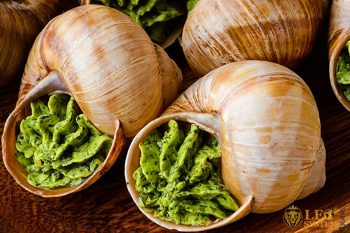 Snail Food with herbs butter - France gourmet dish