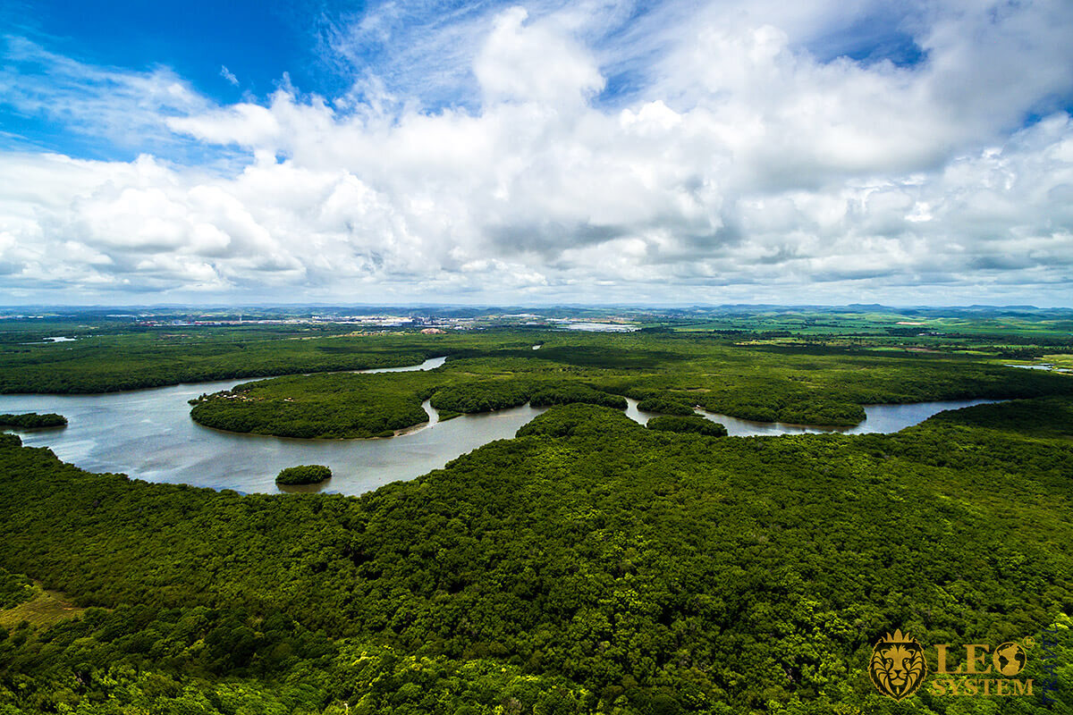 Panoramic view of the Amazon River