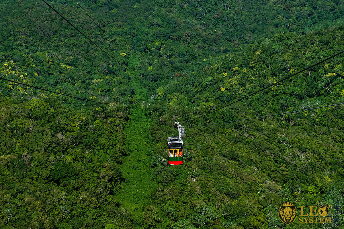 Image of cableway and dense forest, Dominican Republic
