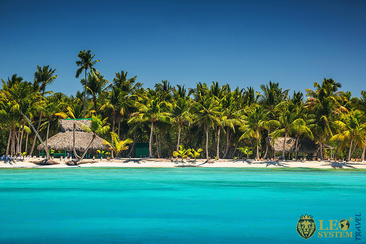Image of beach and palm trees in Puerto Plata, Dominican Republic
