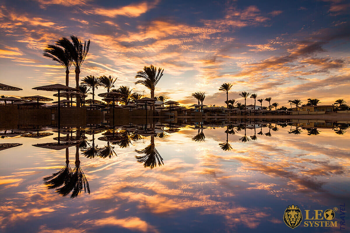 Beautiful view of the palm trees at the time of sunset, city of Hurghada