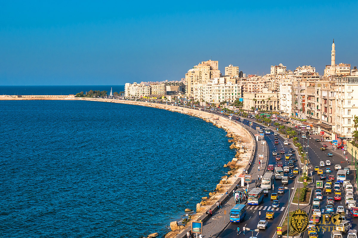 Aerial view of city buildings and coastline, Alexandria, Egypt
