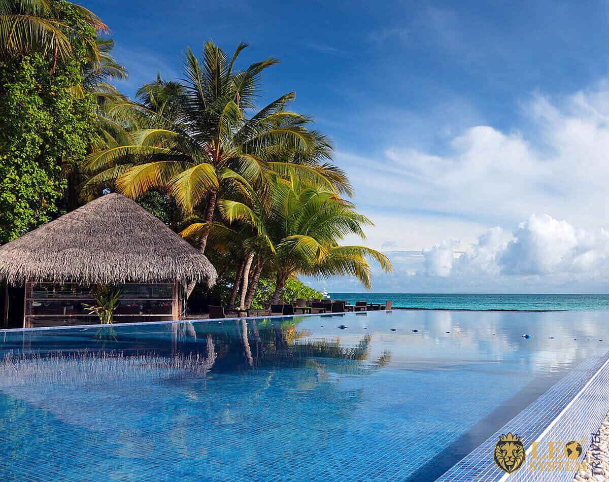 Image of palm trees, pool and ocean, Kuramathi, Maldives