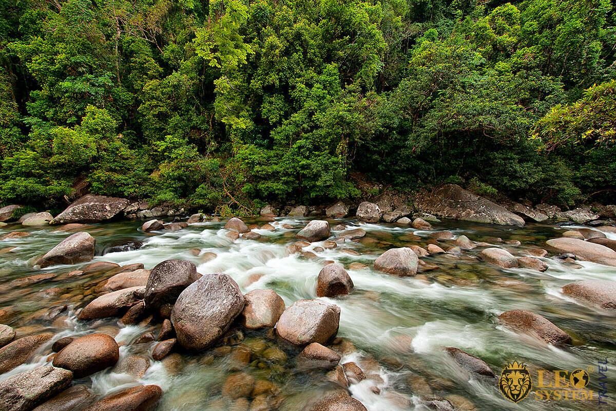 Landscape view of the Daintree Rainforest, Queensland, Australia